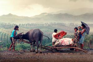 Philippines(farmers)
